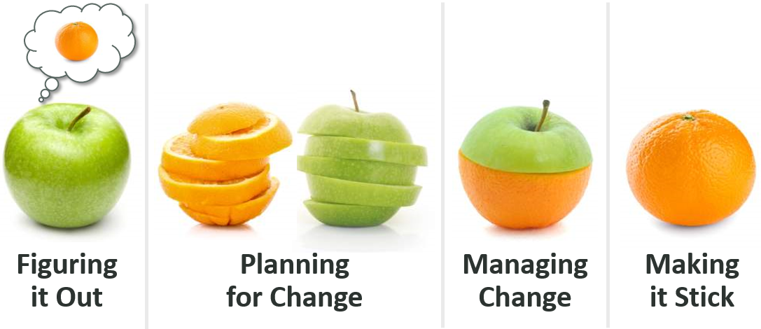 4 Phases of a Change Initiative - Apple and Orange